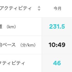 8月の走行距離(歩行も含む)