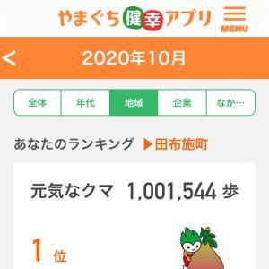 100万歩達成