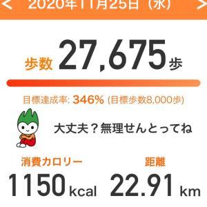 朝と晩走りました