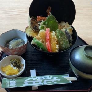 海鮮丼と海老天丼