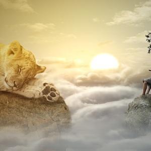 ライオンズゲートが開く日に。「あなた」へ還るための太陽へのアファメーション
