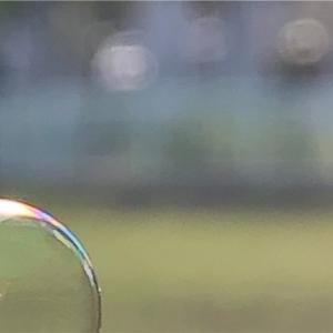 今回の作品/虹色