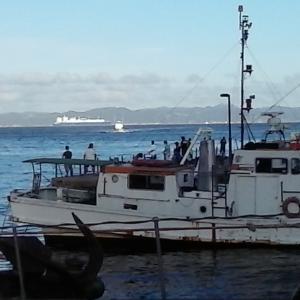 釣り場調査報告