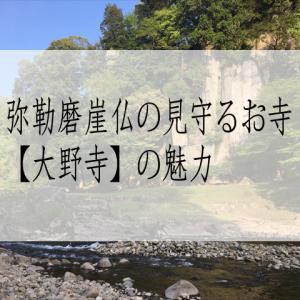 弥勒磨崖仏の見守るお寺【大野寺】の魅力