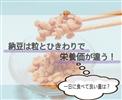 納豆は粒とひきわりで栄養価が違う!一日に食べていい量は?