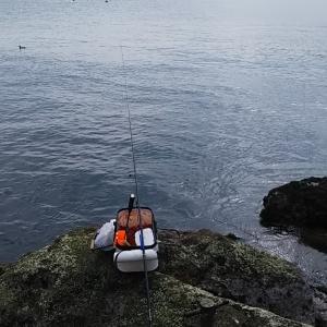 久しぶりのウキ釣り