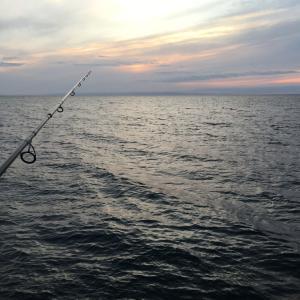 魚は釣れずも道具だけは
