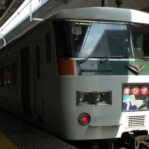 特急「はちおうじ踊り子81号・82号」