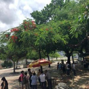 【マカオ世界遺産】バラ広場パワースポットに面する広場