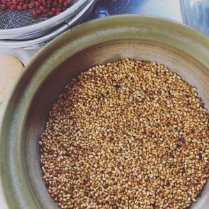 丹田にバシッと氣が入る玄米の底力。