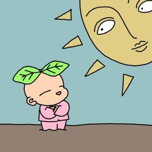 日光を浴びに行け!!