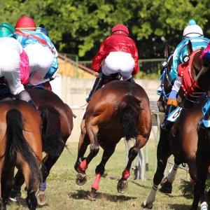 【有馬記念2020予想】今年G1未勝利の武豊騎手がワールドプレミアで最後にビシッと決める!