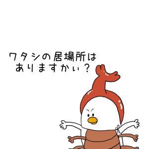 【新築玄関収納】虫かご置き場にもなる使える収納棚!