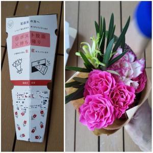 ●お試し●カウンターに花を。「bloomee ブルーミ―(旧ブルーミ―ライフ)」体験。