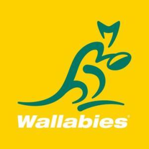 ワラビーズの代表資格変更?