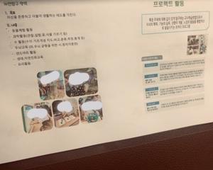 韓国の幼稚園はすでに学歴社会のスタート地点ぽい
