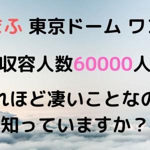 まふまふ東京ドームワンマンが○○ほど凄い件【ライブ】【神楽色アーティファクト】