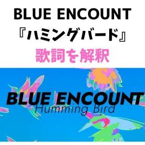 【ハミングバード/BLUE ENCOUNT】歌詞の意味を解釈します!【応援ソング】