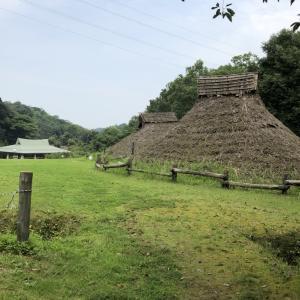 古代の日本史ロマンを感じる荒神谷史跡公園。約5万本の古代ハスや遺跡の謎に迫る荒神谷博物館と、ユニークな弥生時代体験イベント。