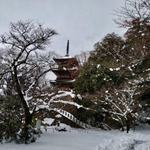 清水寺紅葉館/雪の足立美術館/かまくら作りと雪遊び/とんどさんとおもち/空き家テック