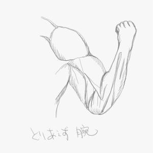 筋肉を描けるようになりたい3