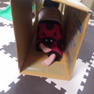 【ダンボール工作】だたトンネルにするだけで、こども大喜び!親子の簡単工作で「おうち時間」を楽しむ