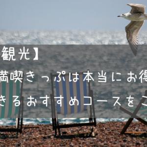 【横須賀観光】よこすか満喫きっぷは本当にお得なのか!?満喫できるおすすめコースをご紹介!
