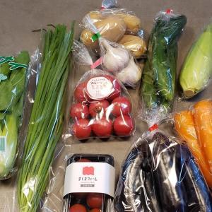 ふるさと納税 野菜定期便 第三便