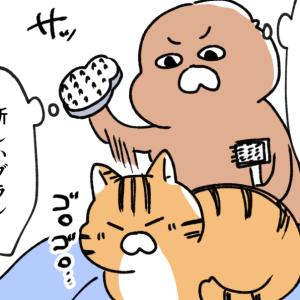 新しい猫ブラシを使ってみた話②