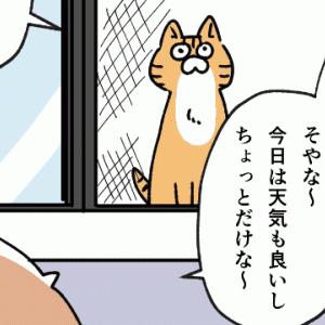 外の気温は猫でも辛いって話