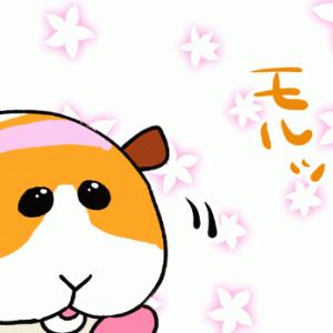 今季ナンバー1癒しアニメ