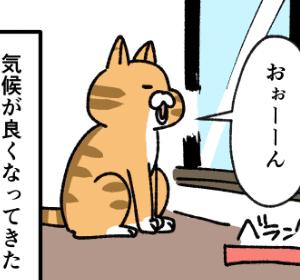 外への執着がすごい猫の話