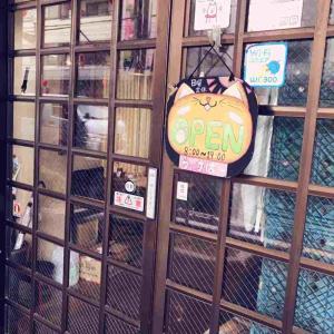 〜ういすぱー 編〜 【チケットレストラン】でお得にゆっくり♪おすすめカフェ【12】