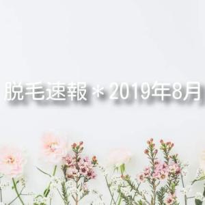 8月の脱サロ速報を更新しました★ 【湘南美容クリニック / ワキ + ヒジ下】