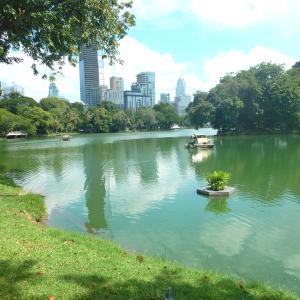 都会のオアシス「ルンピニ公園」でミズオオトカゲをのんびり見物