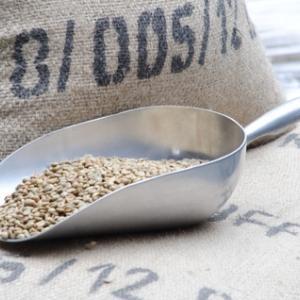 コーヒー豆の格付けは風味の素晴らしさで評価しているわけではない!?格付け方法をまとめてみた