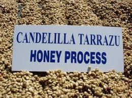 コーヒー豆の精製方法とそれぞれの風味の特徴