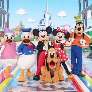 ディズニーに年パスで1年間通った感想や思い出を振り返る!