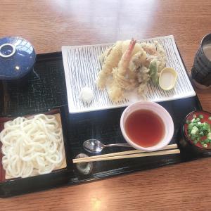 ディズニーシーで唯一和食が食べれる【レストラン櫻】の期間限定メニューが絶品!