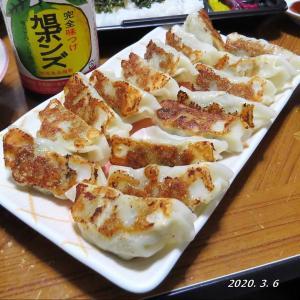 【栃木】宇都宮  肉餃子