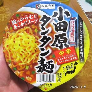 【神奈川】小田原タンタン麺