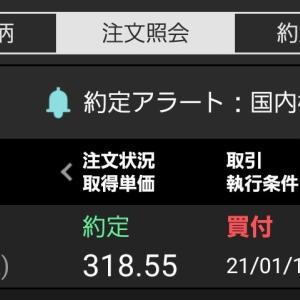東京電力を購入
