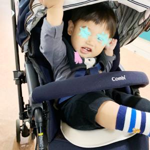 1歳2ヶ月★小頭症決着とワシのベビーカーバック