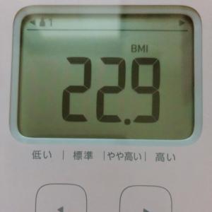 憧れのBMI22台(///ˊㅿˋ///)