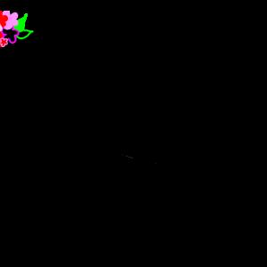 【フラワーカップ 2020】予想にむけて~ラップ展開♡予習3/20(金)
