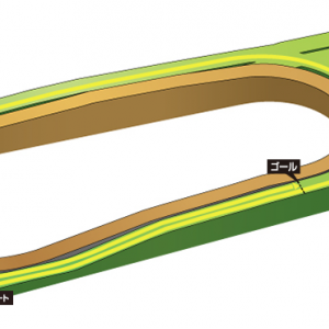 【京都新聞杯 2021】競馬予想5/8・キースの予想印