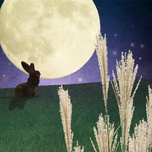 今日の瞑想 90 兎と亀の油断大敵と月読命の大祓
