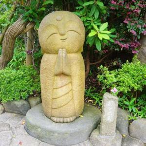 今日の瞑想 116 巴蛇と唆す蛇のハレとケ