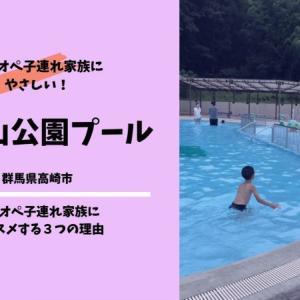 観音山公園プール(群馬県高崎市・屋外プール)|ワンオペ子連れにおススメする3つの理由