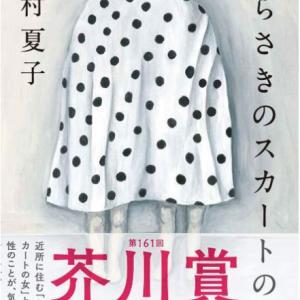 今村夏子「むらさきのスカートの女」感想 -先が気になるジャンル不明の小説-